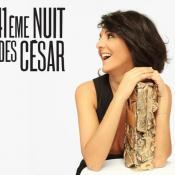 Si vous avez loupé le magnifique palmarès 2016 de la cérémonie des César, le voici !