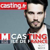 Affiche Mister Île de France 2016