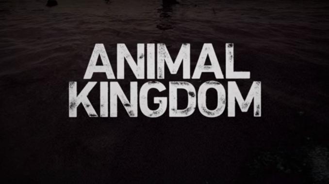Animal Kingdom Casting Tnt 678x381png Casting Worldwide