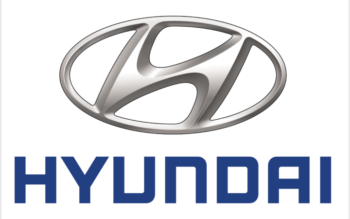 Hyundai Commercial Actress and Model